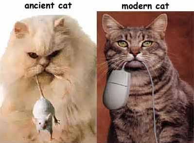 A modern CAT