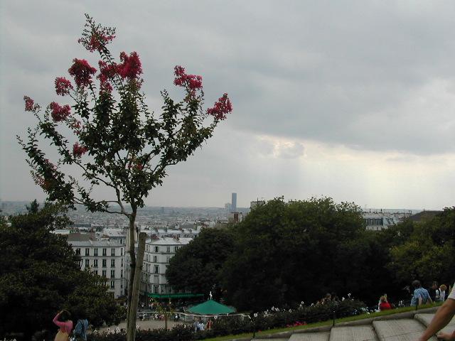 A view from Montmarte(sacre-coeur, Paris)
