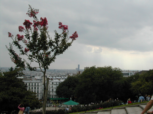 A view from Montmarte(sacre-coeur, Paris)