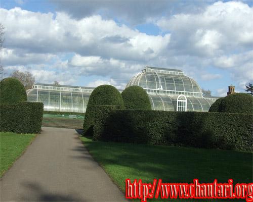London Q Garden