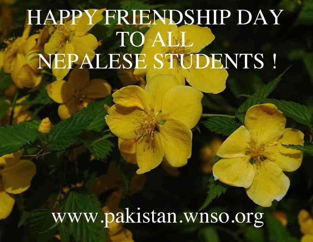 WNSO Pakistan