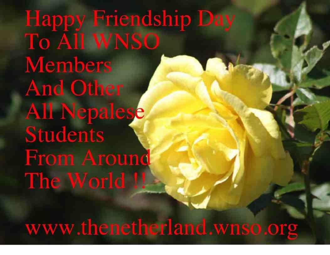 WNSO Netherland